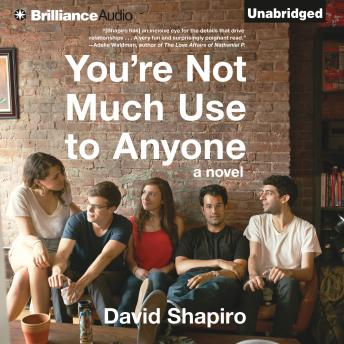 You're Not Much Use to Anyone, David Shapiro
