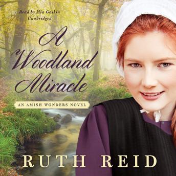 Download Woodland Miracle: An Amish Wonders Novel by Ruth Reid