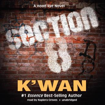 Section 8: A Hood Rat Novel, K'wan