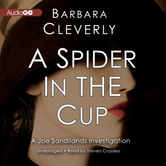 Spider in the Cup, Barbara Cleverly