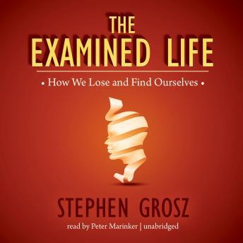 Examined Life: How We Lose and Find Ourselves, Stephen Grosz