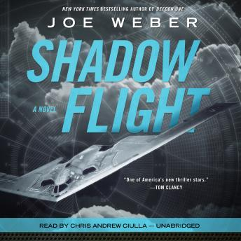 Shadow Flight: A Novel, Joe Weber