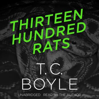 Thirteen Hundred Rats, T.C. Boyle