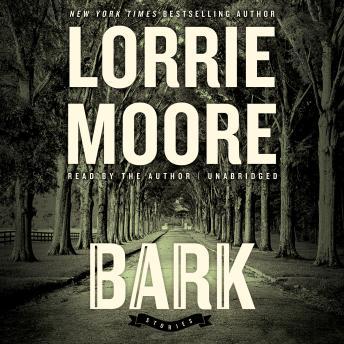 Bark: Stories details