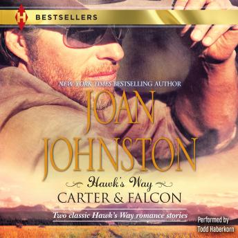 Hawk's Way: Carter & Falcon, Joan Johnston