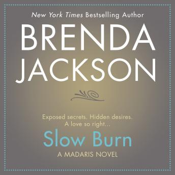 Download Slow Burn by Brenda Jackson