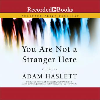 You Are Not A Stranger Here: Stories, Adam Haslett