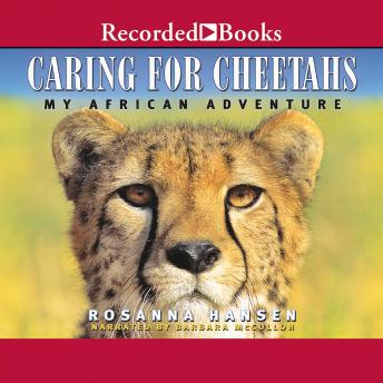 Caring for Cheetahs, Rosanna Hansen