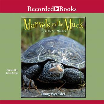 Marvels in the Muck, Doug Wechsler