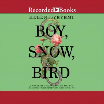 Get Boy, Snow, Bird