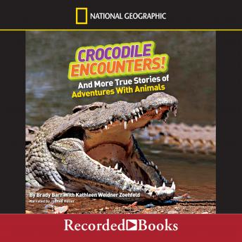National Geographic Kids Chapters: Crocodile Encounters: And More True Stories of Adventures with Animals, Kathleen Weidner Zoehfeld, Brady Barr