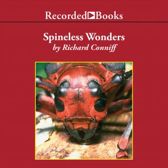 Spineless Wonders: Strange Tales from the Invertebrate World, Richard Conniff