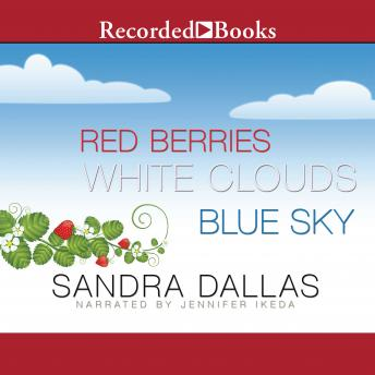 Red Berries, White Clouds, Blue Sky