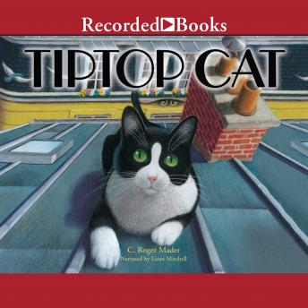 Tiptop Cat, Roger Mader