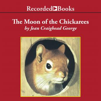 Moon of the Chickaree, Jean Craighead George