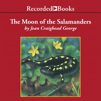 The Moon of the Salamanders