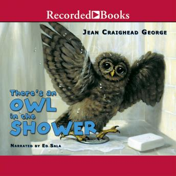 There's an Owl in the Shower, Jean Craighead George