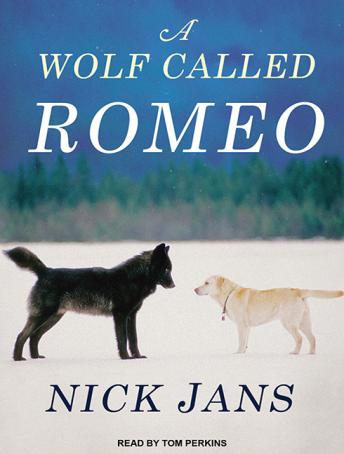 Wolf Called Romeo, Nick Jans