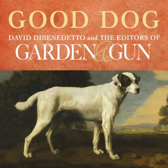 Good Dog: True Stories of Love, Loss, and Loyalty, Editors of Garden & Gun , David Dibenedetto
