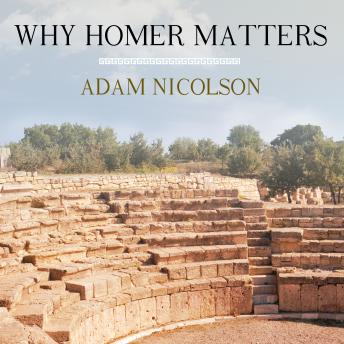 Download Why Homer Matters by Adam Nicolson
