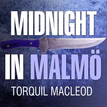 Midnight in Malmö: The Fourth Inspector Anita Sundstrom Mystery