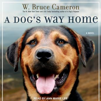 Dog's Way Home, W. Bruce Cameron