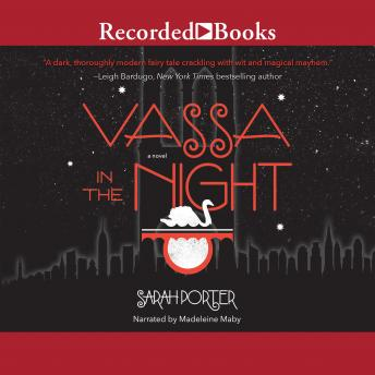 Download Vassa in the Night by Sarah Porter
