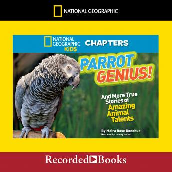 National Geographic Kids Chapters: Parrot Genius: And More True Stories of Amazing Animal Talents, Moira Rose Donohue