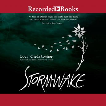 Storm Wake details