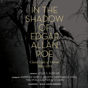 In the Shadow of Edgar Allan Poe: Classic Tales of Horror, 1816–1914, Various Authors
