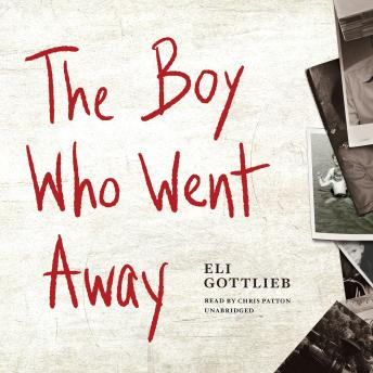 Boy Who Went Away: A Novel sample.