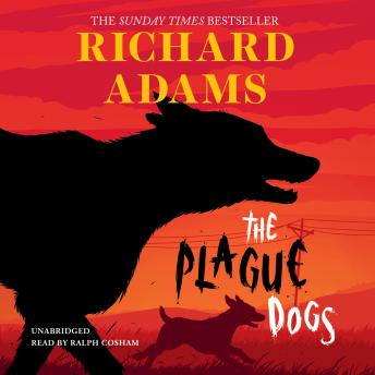 Plague Dogs, Richard Adams