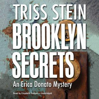 Brooklyn Secrets: An Erica Donato Mystery, Triss Stein