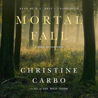 Mortal Fall: A Novel of Suspense, Christine Carbo