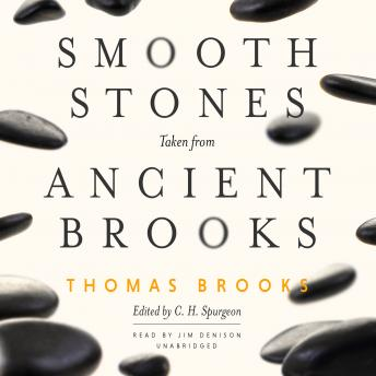 Smooth Stones Taken from Ancient Brooks: Forces of Change in the Post-Crisis World