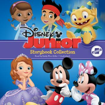 Disney Junior Storybook Collection: Sofia the First, Doc McStuffins, Jake and the Never Land Pirates, Mickey/Minnie, Henry Hugglemonster, Disney Book Group