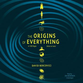 Origins of Everything in 100 Pages (More or Less), David Bercovici