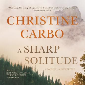 A Sharp Solitude: A Novel of Suspense