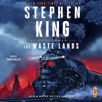 Dark Tower III: The Waste Lands, Stephen King