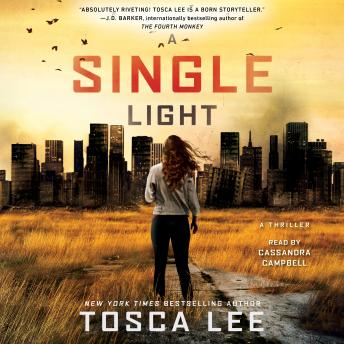 A Single Light: A Novel