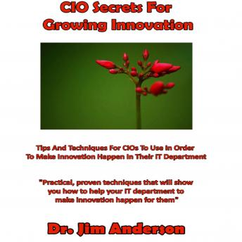 CIO Secrets for Growing Innovation: Tips and Techniques for CIOs to Use in Order to Make Innovation Happen in Their IT Department, Dr. Jim Anderson