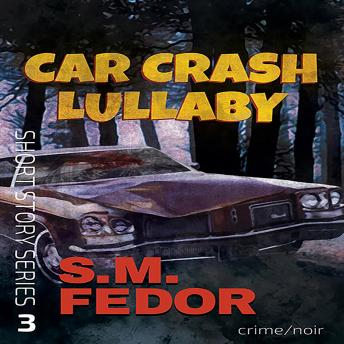 Car Crash Lullaby, S. M. Fedor