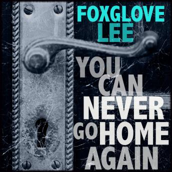 You Can Never Go Home Again: Paranormal LGBTQ Young Adult Fiction sample.