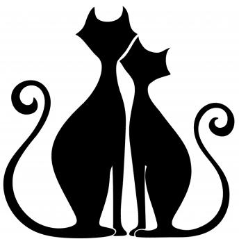 Kissa the Cat