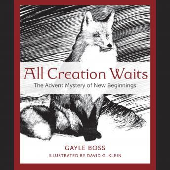 All Creation Waits: The Advent Mystery of New Beginnings, Gayle Boss
