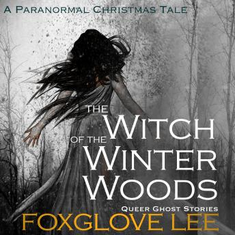 The Witch of the Winter Woods: A Paranormal Christmas Tale