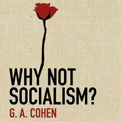 Download Why Not Socialism? by G. A. Cohen