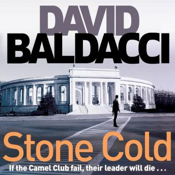 Download Stone Cold by David Baldacci