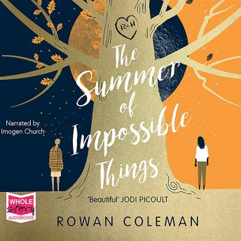 Summer Of Impossible Things, Rowan Coleman