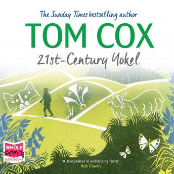 Download 21st Century Yokel by Tom Cox